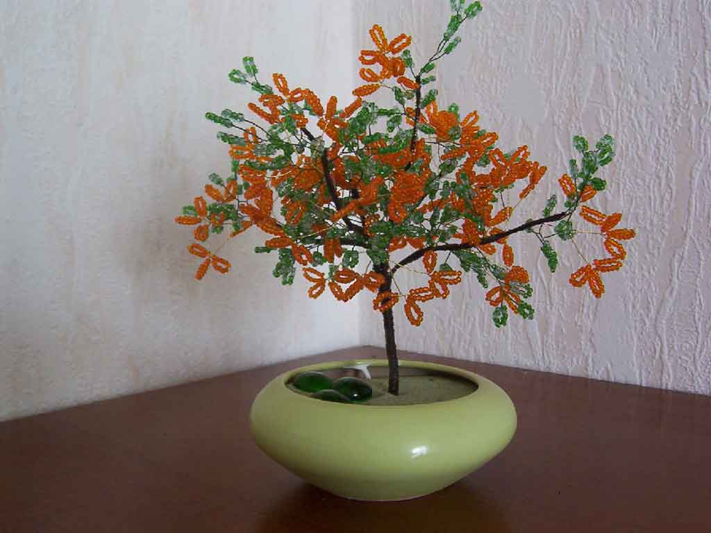 n°731 arbre ailette orange pot conique vert