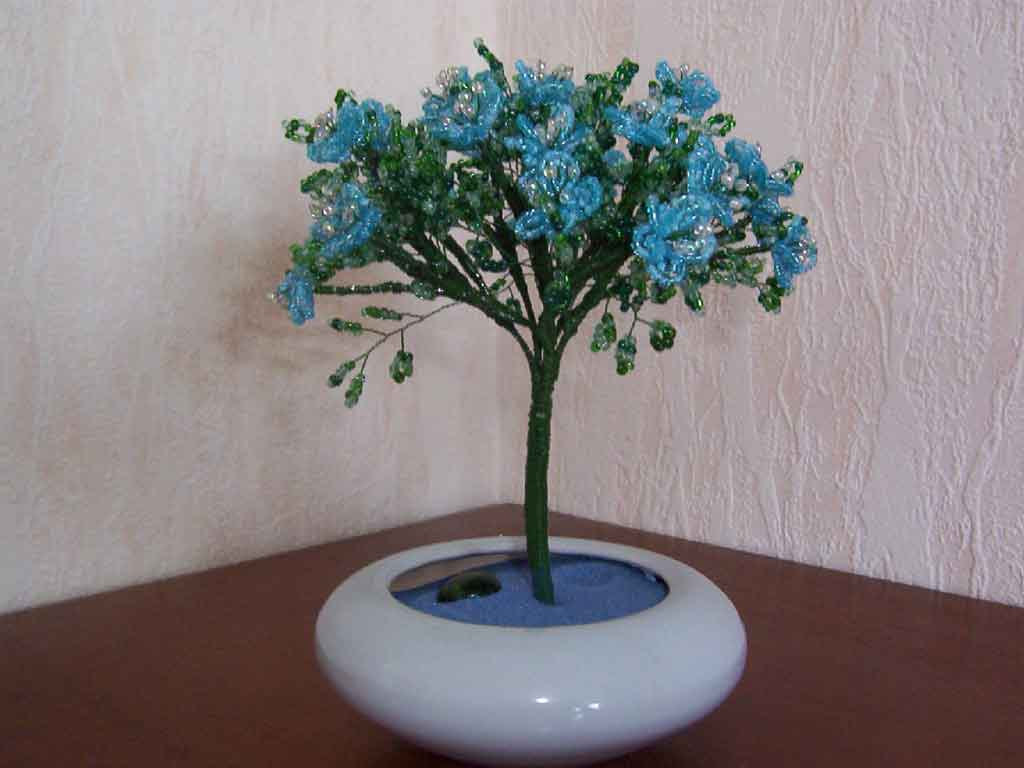 N°746 arbre marguerite bleue  pot conique bleu