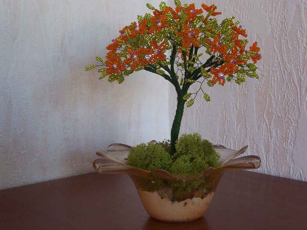 N°753 arbre marguerite orange pot fleur en verre