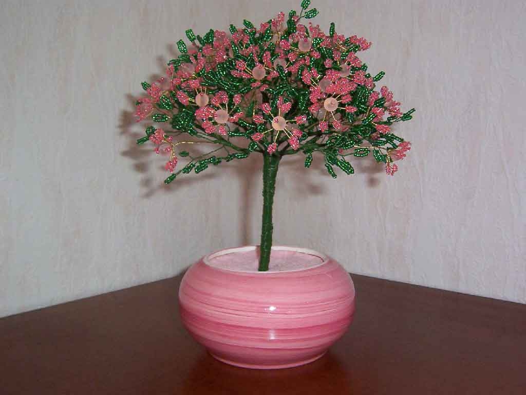N°773 arbre margueritte double  rose coeur boule rose pot rond rose
