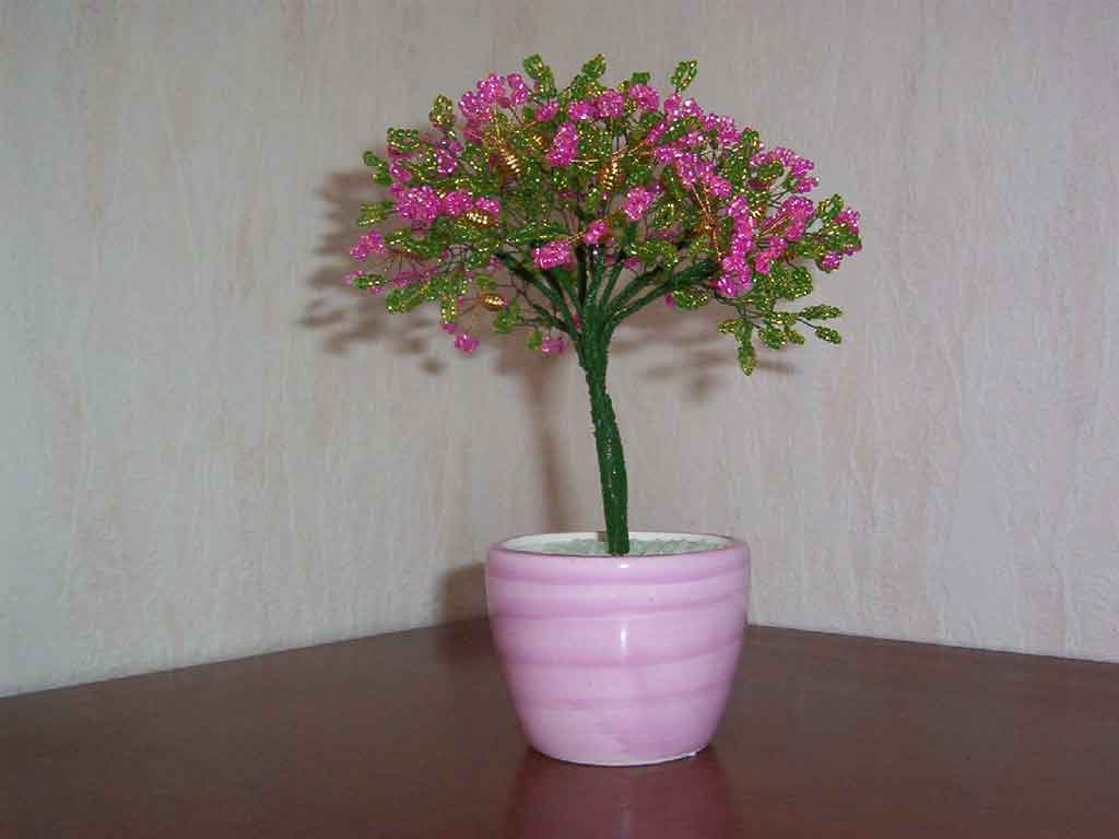 N°779 arbre eventail rose pot rond rose